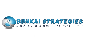 bunkai strategies newsletter 2012