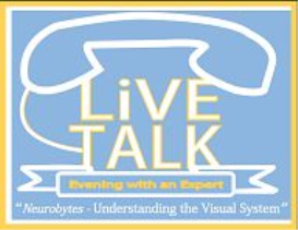 evening with an expert - understanding the visual system
