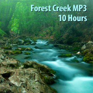 forest creek mp3 (10 hours)