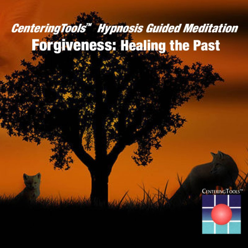 First Additional product image for - Forgiveness: Healing the Past