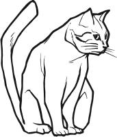 clipart - animals - cats