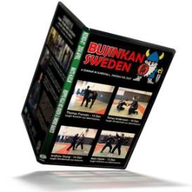 keiko#17 bujinkan sweden seminar with andrew, mats, thomas, tomas
