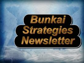 bunkai strategies newsletter 2013
