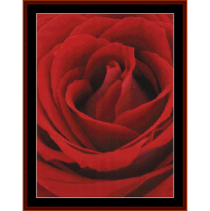 blooming red rose - floral cross stitch pattern by cross stitch collectibles