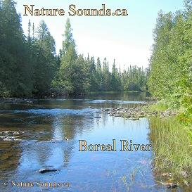 boreal river sounds