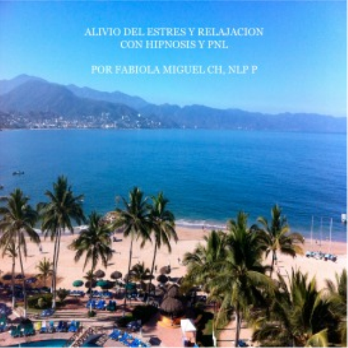 First Additional product image for - Programa Alivio del Estres y Relajacion hipnosis audios mp3
