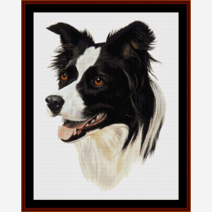 border collie - robert j. may cross stitch pattern by cross stitch collectibles