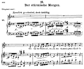der stürmische morgen d.911-18, medium voice in d minor, f. schubert (winterreise), c.f. peters