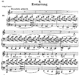 erstarrung d.911-4, medium voice in a minor, f. schubert (winterreise), c.f. peters
