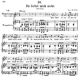 du liebst mich nicht d.193, medium voice in g minor, f. schubert, c.f. peters