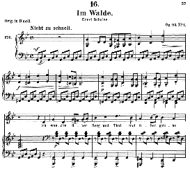 Im Walde D.708, Medium Voice in G Minor, F. Schubert (Pet.) | eBooks | Sheet Music