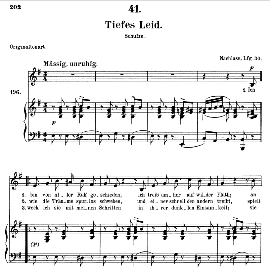 tiefes leid d.876, medium voice in e minor, f. schubert (pet.)