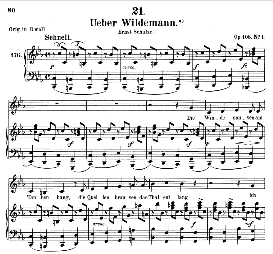 über wildemann d.867, medium voice in c minor, f. schubert (pet.)
