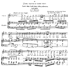 "Dopo tante e tante pene (Cantata), High Voice in B Flat Minor, B.Marcello. (includes ""Quella Fiamma""). Caecilia, Ed. André (1900) Vol. II, 906-d. PD 