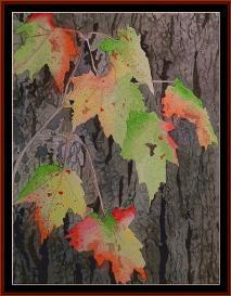 fall colors - seasonal cross stitch pattern by cross stitch collectibles
