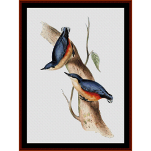 common nuthatch - wildlife cross stitch pattern by cross stitch collectibles