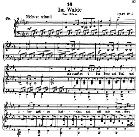 im walde (waldes nacht) d.708, high voice in b flat minor, f. schubert (pet.)