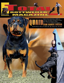 issue 2 of 2009