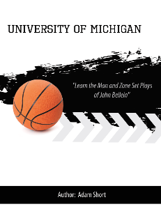 university of michigan playbook