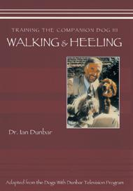 training the companion dog 3: walking & heeling