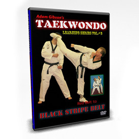 tae kwon do- black stripe requirements