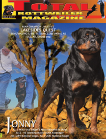 issue 4 of 2012-