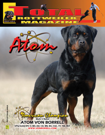 issue 3 of 2012
