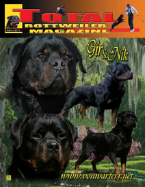 issue 4 of 2011