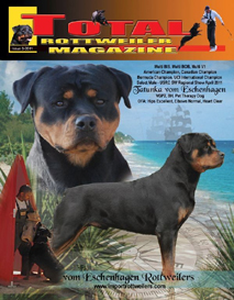 issue 3 of 2011
