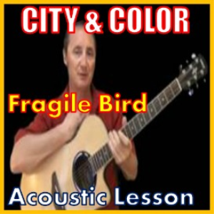 learn to play fragile bird by city and color