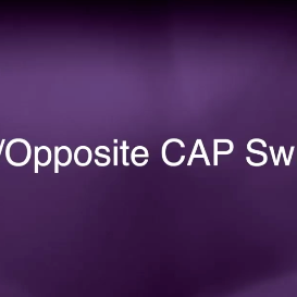 opposite direction cap swivel