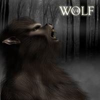 Wolf V4 | Software | Design