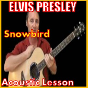 Learn to play Snowbird by Elvis Presley | Movies and Videos | Educational
