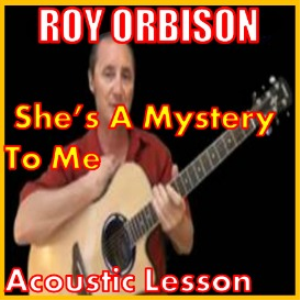 learn to play she's a mystery to me by roy orbison