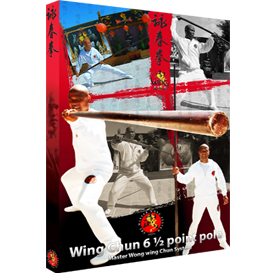 wing chun 6 half point pole