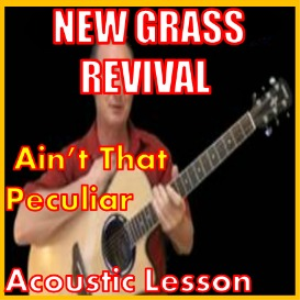 Learn to play Aint That Peculiar by Newgrass Revival | Movies and Videos | Educational