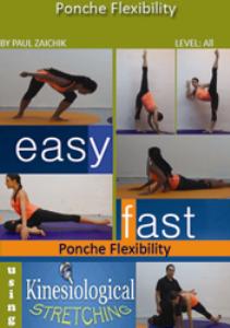 ponche flexibility