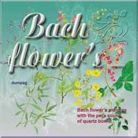 bach flower mantras -  agrimony