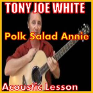 learn to play polk salad annie by tony joe white