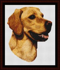 yellow labrador - robert j. may cross stitch pattern by cross stitch collectibles