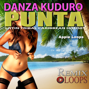 danza kuduro punta drum & percussion loops