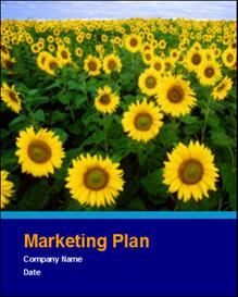 Marketing Plan Template | Software | Business | Other