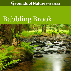 babbling brook by joe baker