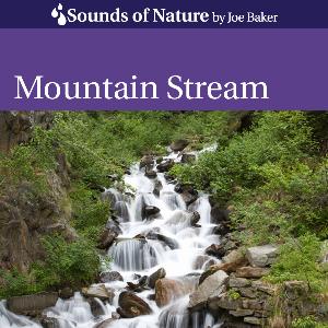 mountain stream by joe baker