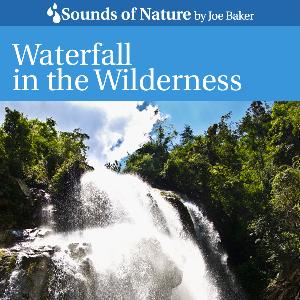 waterfall in the wilderness by joe baker