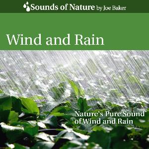 wind and rain by joe baker