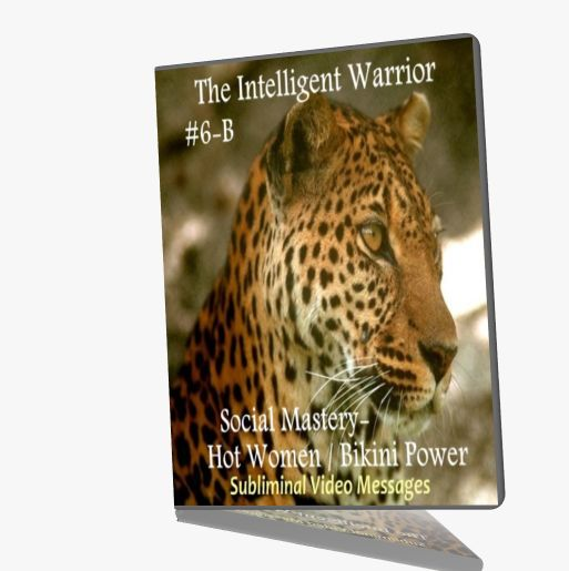 First Additional product image for - The Intelligent Warrior VI 6 Subliminal Video Messages Social Mastery
