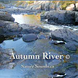 autumn river - sleepynaturesounds.com