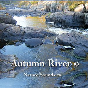 autumn river - sleepynaturesounds.com