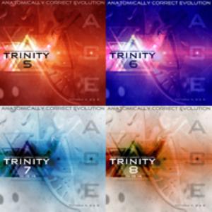 anatomically correct evolution: trinity bundle 2